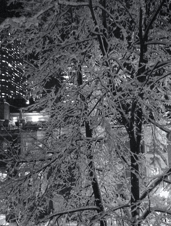 out the window after the snow_B&W