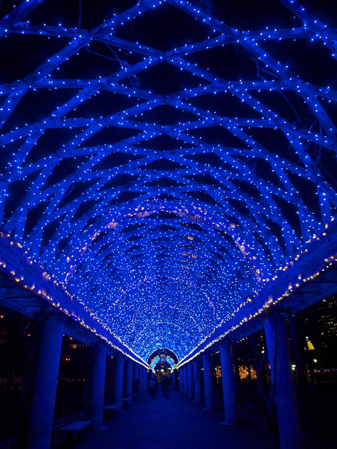Christopher Columbus Trellis With Blue Lights