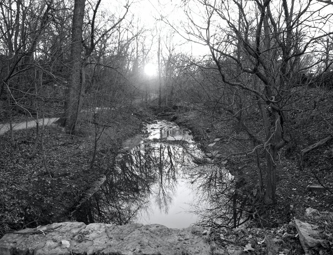 Elmwood Creek (with trail)_final