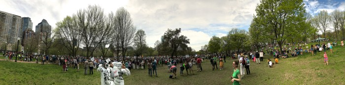 Boston Climate March Panorama